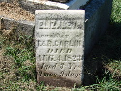 Elizabeth Carlin