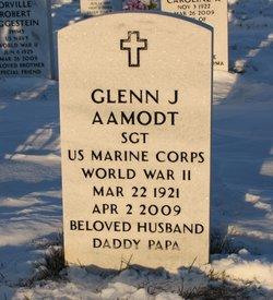 Glenn J Aamodt