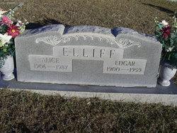 Alice <I>Wood</I> Elliff