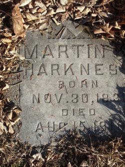 Martin K Harkness