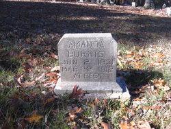 Amanda Jane <I>Hughes</I> Burris