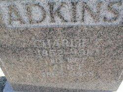 Charlie Lee Adkins