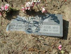 Elow James Adams