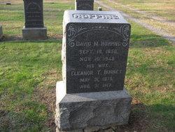 David M Hopping