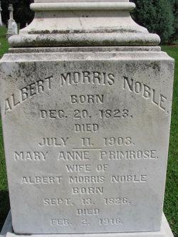 Albert Morris Noble