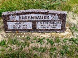 A. D. Ankenbauer