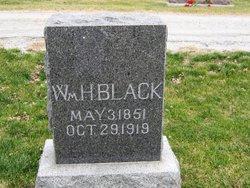 William Harvey Black