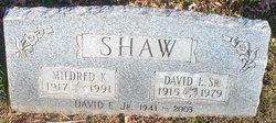 David E Shaw Sr.