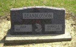 Harold Lee Beanblossom