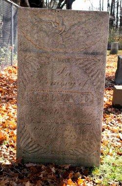 Julia E. Wood