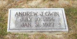 Andrew Jackson Gwin
