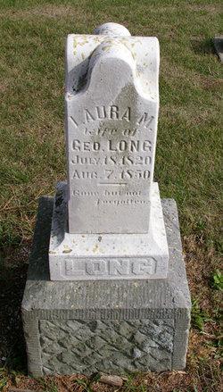 Laura M Long