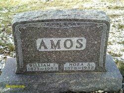William Thomas Amos
