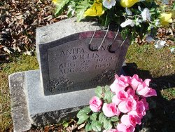 Anita Lynn Willis