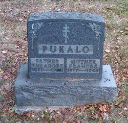 Theadore Pukalo