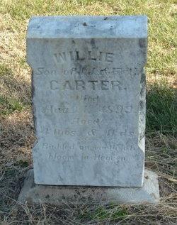 Willie Carter