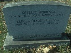 Roberto Bribiesca