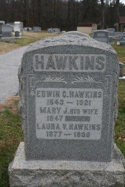 Mary Jane <I>Nelson</I> Hawkins