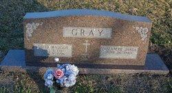 David Madison Gray