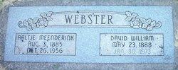 Aaltje <I>Meenderink</I> Webster