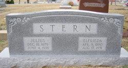 Elfrieda <I>Hahn</I> Stern