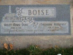 Theodore Boise