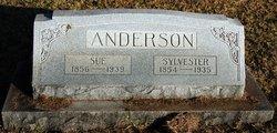 Sue <I>Skelton</I> Anderson