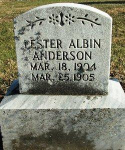Lester Albin Anderson