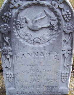 Hannah E Davis