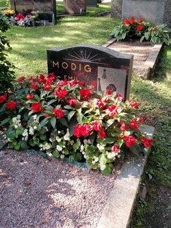 Emil Modig