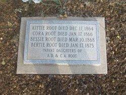 Bertie Root