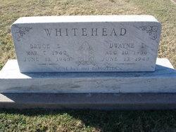 Dwane L. Whitehead