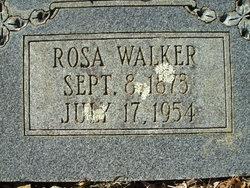Rosa <I>Bargiel</I> Walker
