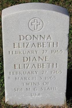Diane Elizabeth Stahl