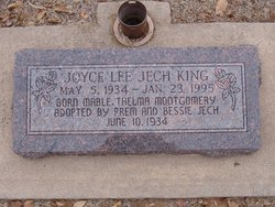 Joyce Lee <I>Jech</I> King