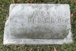 Roland G. W. Bidgood