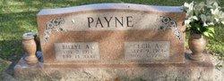 Cecil A Payne