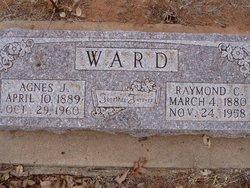 Agnes J. Ward