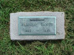 Harriet Salina <I>Sackett</I> Bandy