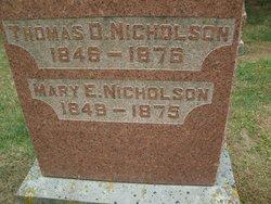 Thomas D. Nicholson