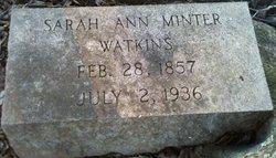 Sarah Ann <I>Minter</I> Watkins