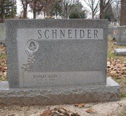 Murray Allen Schneider