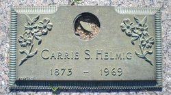 Carrie S. Helmig