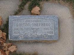 Dalton Shepherd