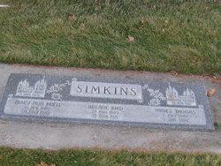 Mary Ann <I>Buel</I> Simkins