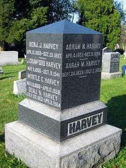 Abram Nesbitt Harvey