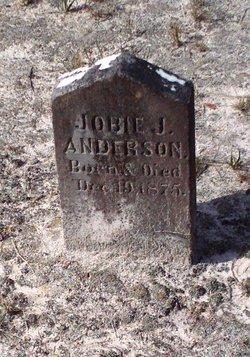 """Job Jasper """"Jobie"""" Anderson, Jr"""