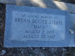 """Bryan Scott """"MAGIC"""" Steppe"""