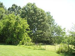 Harkins Cemetery