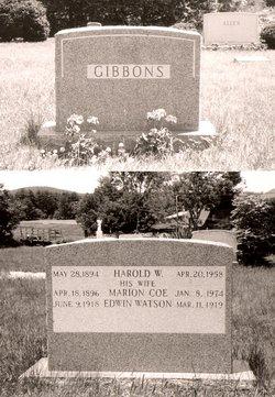 Edwin Watson Gibbons